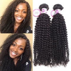 Affordable Peruvian Kinky Curly Human Hair Weave Bundles For Sale